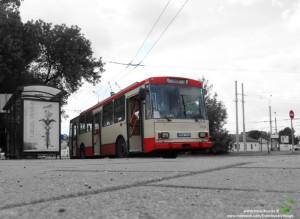 13 maršruto troleibusas Naugarduko žiede, 2013-06-30